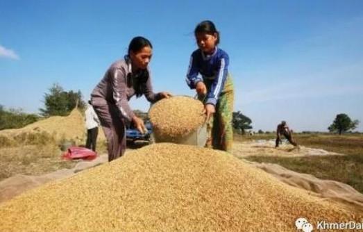 柬埔寨减速建设